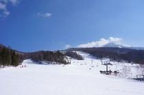 白樺高原国際スキー場 ゲレンデ