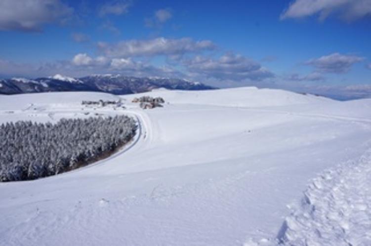 冬のビーナスライン