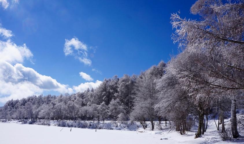 冬の女神湖湖畔