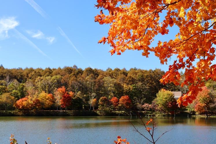 女神湖湖畔秋