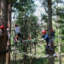 高さ7mに張り巡らされたロープの上を移動するハイエレメントコースは事前にご予約ください。