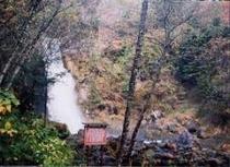 尾の島の滝