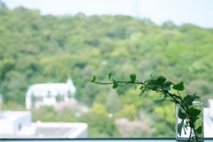 城山ビュータイプのお部屋からの眺め