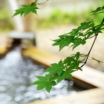 緑薫る露天風呂♪