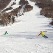 スキー(3)