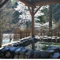 【貸切風呂】山の湯/石湯露天(春)
