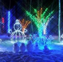 【国営アルプス安曇野公園】冬の夜を彩るイルミネーション