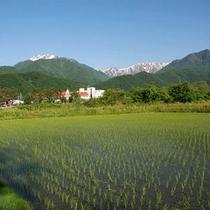 【立地環境】澄んだ空気と水と緑に囲まれてます