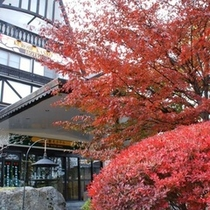 ホテルの前も紅葉に包まれます