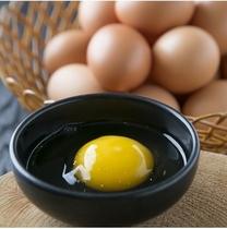 """大地の卵 昔なつかしい""""山吹色の卵""""。卵かけ御飯で大変美味しく召し上がれます。"""