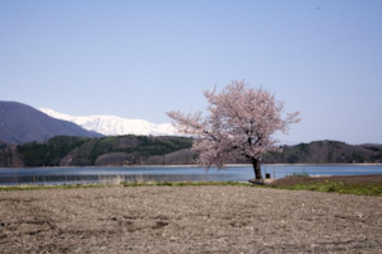 春の青木湖