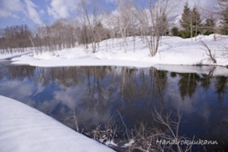 きんこん館近くの池