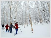 冬:スノートレッキング