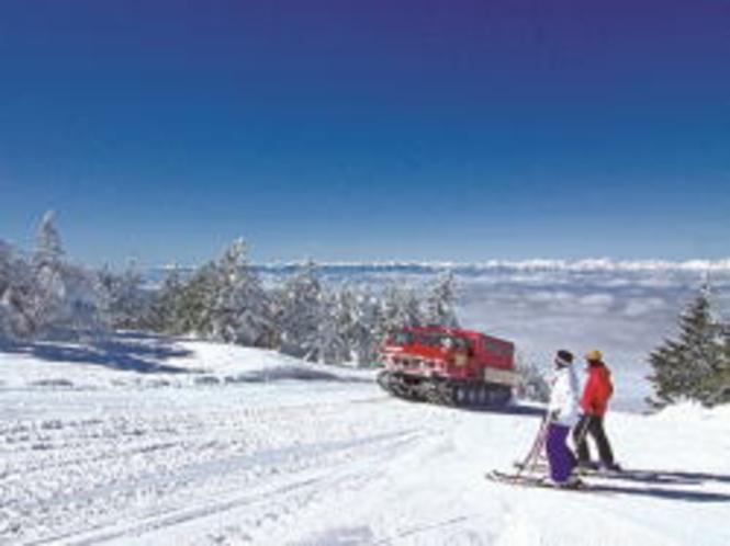 スノーキャットで行く根子岳からのダウンヒルは最高