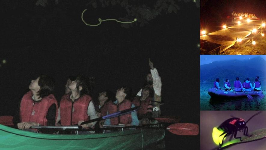 【ナイトレイクホタルと星の観賞ツアー】夜の青木湖でボートからホタルや星を観察