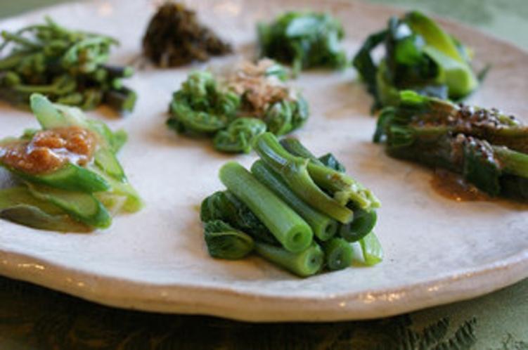 山菜料理 春