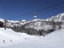 栂池スキー場リフト券付プラン ゴンドラ・リフト券1日〜2・5日券から選べます