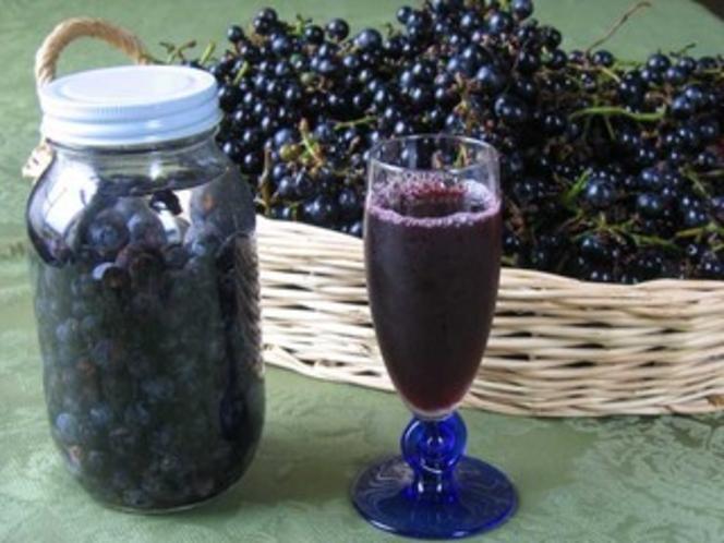 山ぶどうの収穫 (秋) ジュース、パン用酵母、ソース類に利用