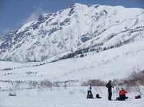 バックカントリープラン 2月中旬〜 栂池自然園 白馬岳と大雪原