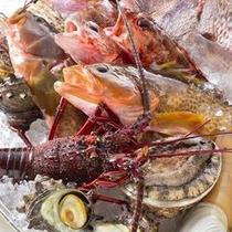 中国料理「鴻臚」 活海鮮