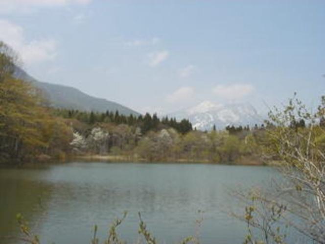 春の御鹿池