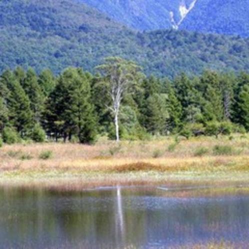 年に1度くらいしか見られない幻の小田代湖。出会えたらラッキー!