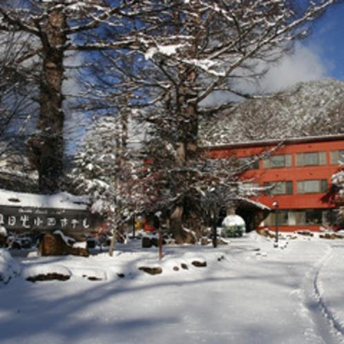 白銀の世界。スノースポーツをお楽しみください。