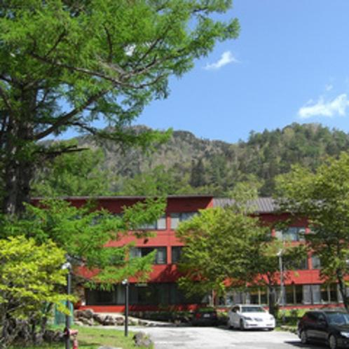新緑の季節。小西ホテル前景です