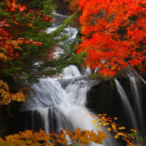 紅葉の季節は絵になります!竜頭の滝