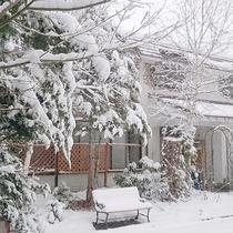 *[本館/外観(冬)]冬は雪遊びも楽しめます♪