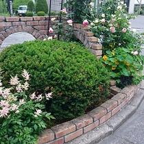 *[ガーデン]丹精込めて育てた季節の花々