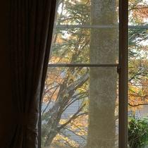 *[アネックス館/ツイン・バストイレ付]四季の移ろい感じる木立が窓の外に望めます