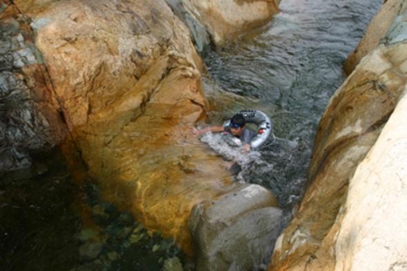 絶好の川遊び場で泳ごう!(朝食付き)