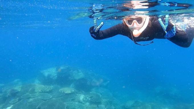 【宇和島でしか出来ない体験】愛媛県南予の美しい秋の海でシュノーケリング体験【しこくるり】