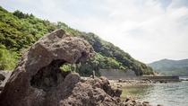 九島 ゴジラ岩
