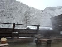 露天 木 雪山