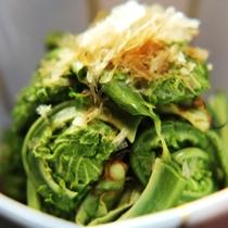 ☆山菜を使った料理をたくさんお楽しみ頂けます