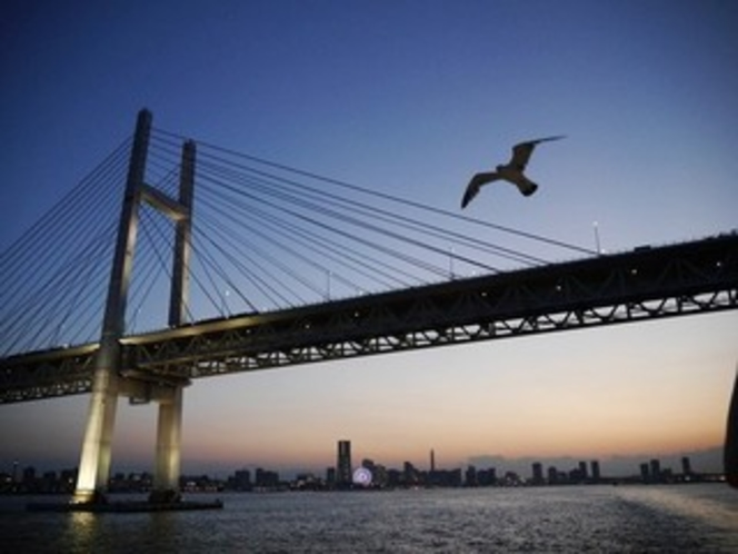 サマーナイトクルーズ・船上からの夜景①