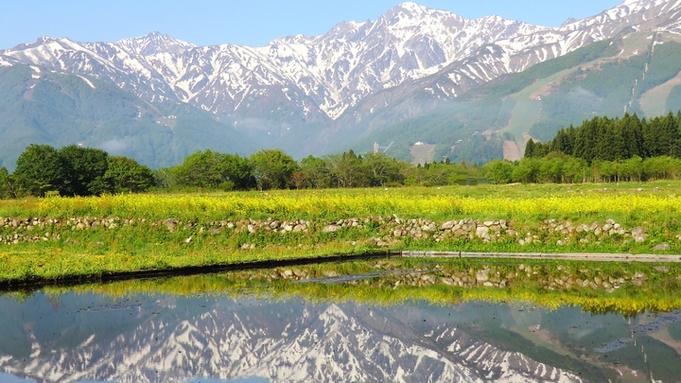 【スタンダード2食付】トレッキング・登山・白馬の山遊びの拠点に!有機野菜たっぷりのお料理【温泉】