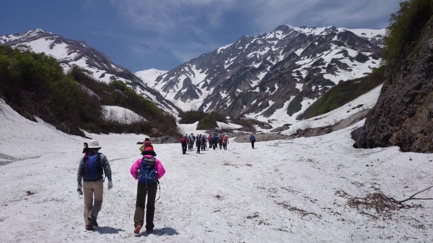*[白馬の景色・冬]白馬大雪渓トレッキングもおすすめ