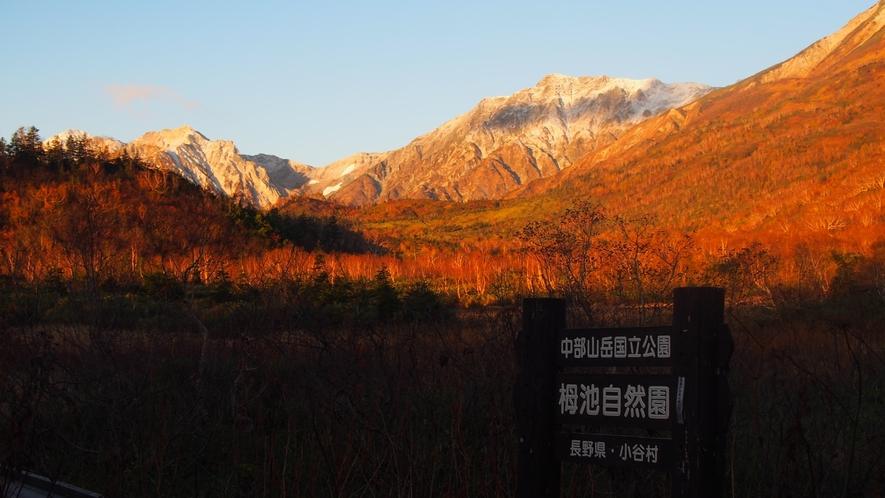 *[白馬の景色・秋]白馬ならではのダイナミックな紅葉景色をお楽しみください