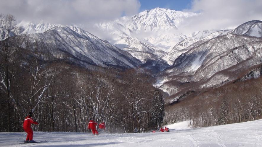 *[白馬の景色・冬]北アルプスに向かって迫力の滑りが楽しめます
