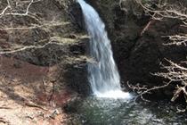 世立て 八滝