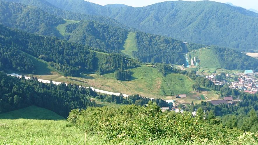 初夏のスキー場の一部