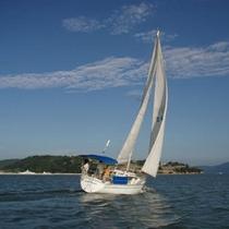 風だけで爽快にすすむヨット