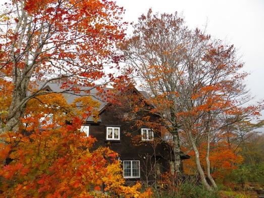 秋の味覚狩りプラン