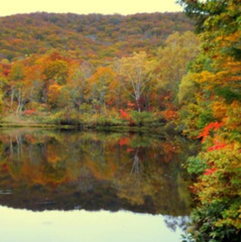 玉原湖に写った紅葉