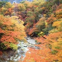 那須塩原の風景(鹿股川)