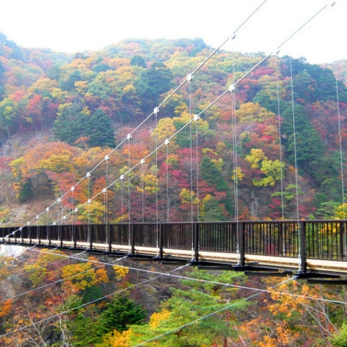 那須塩原の風景(鬼怒楯岩大吊橋)