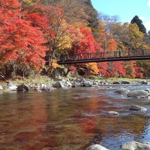 那須塩原の風景(紅の吊橋)